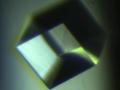 GCPII_crystal